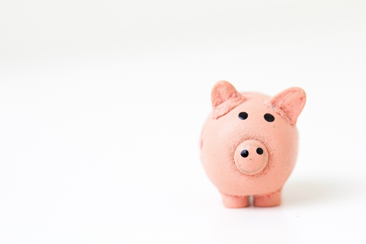 A piggy bank representing an answer to the question - Are coding bootcamps worth it?