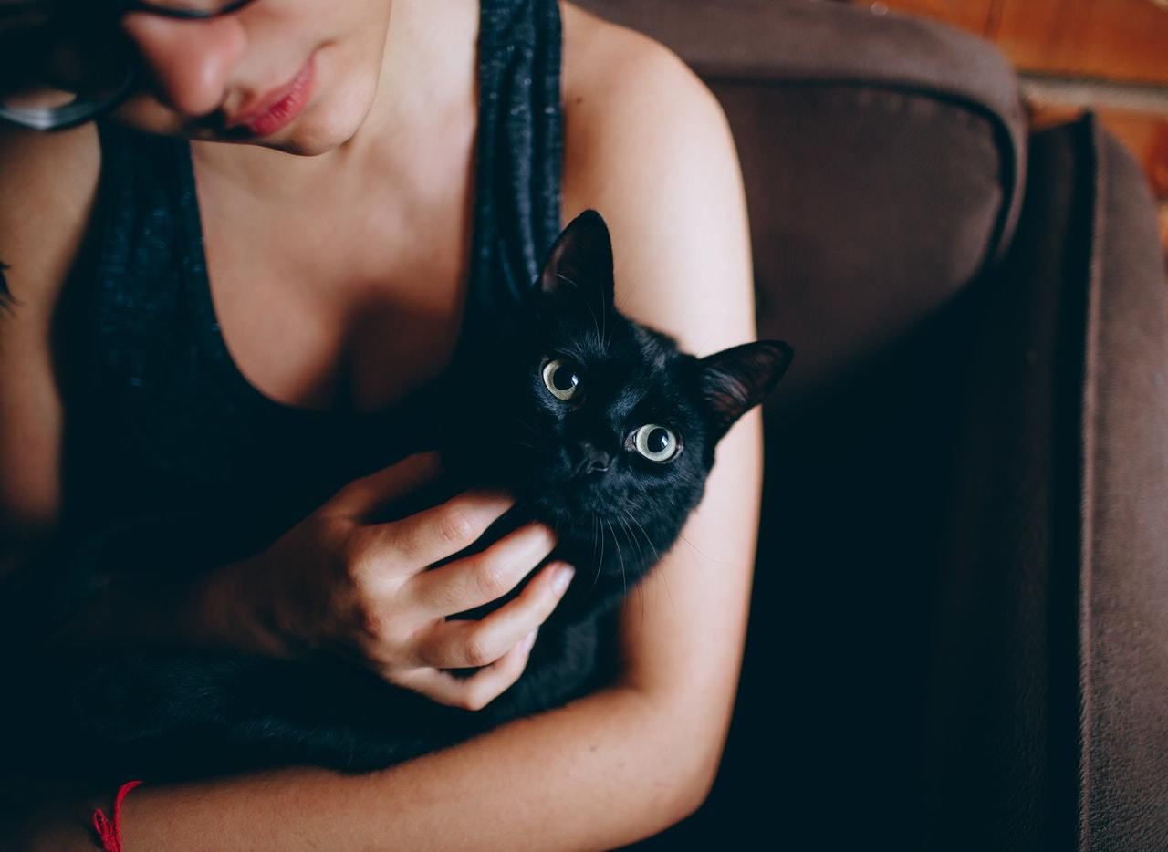 Woman petting black cat